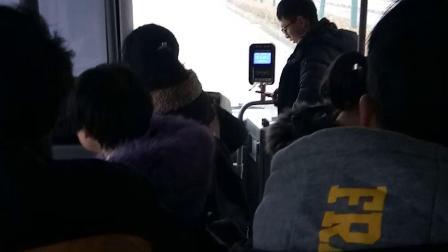 合肥301路公交车🚌