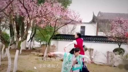 【禅舞供舞】《菩提树》美琪/思缨 中道禅舞之家(总部)
