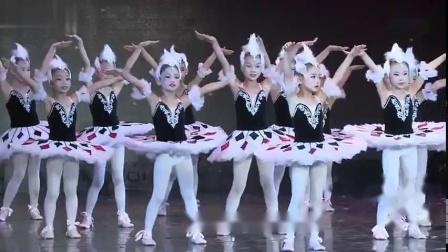 公主与野猫舞蹈