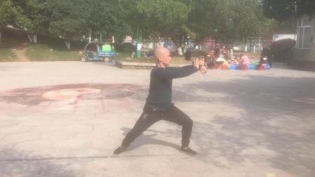 金2019初练陈式56太极拳