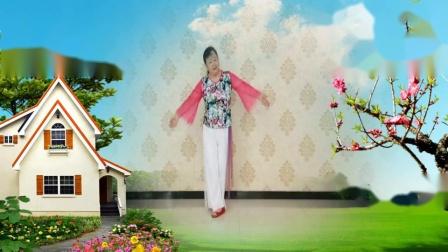 柳絮飞飞皇城舞《红枣树》 编舞:依依