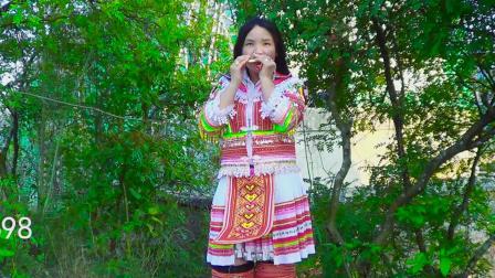 苗族口琴2