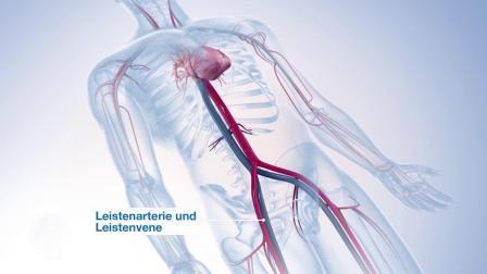 医学模拟 心脏.mp4