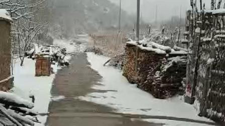 CCTV牛恩发现之旅:美丽自然说京郊三月的雪(延庆)。