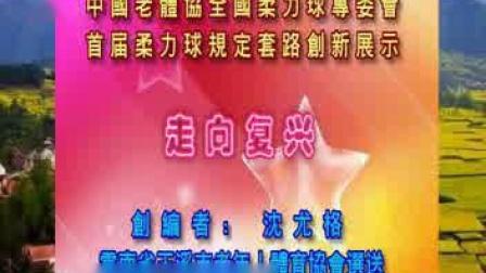 中国老体协首届全国柔力球规定套路创新展示《走向复兴》_标清