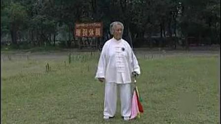 杨式太极刀(扎西)
