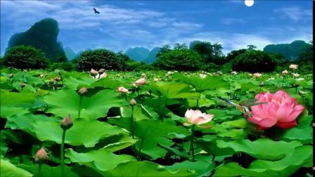莲花-李玉刚4.28