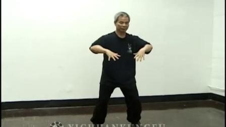 Yi Chuan Standing Practice