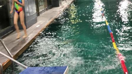 庄文宝宝学跳水