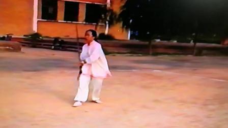 2001年8月剑舞瑛姿学练形意规定剑