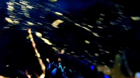 人家的是珊瑚產卵,我们的是海蛞蝓纏綿.#墾丁godiving趣潛水