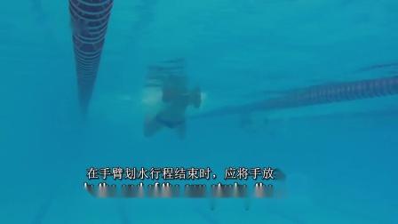 B-蛙泳最重要的几个技术要点