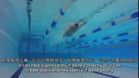 F-自由泳最重要的几个技术要点!