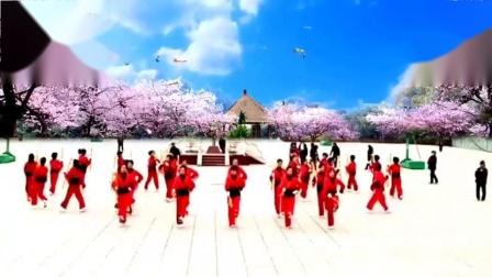 中老年《打花棍》广场舞蹈,简单又健身_高清