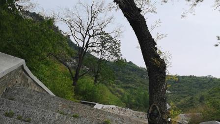 CCTV牛恩发现之旅:祈福园中`人工天梯'千余阶直至金顶。(心声诉说晋南情)。