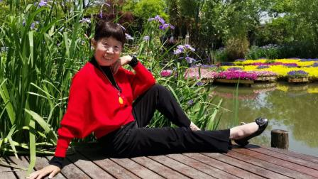 上海闵行《梦花源》相册
