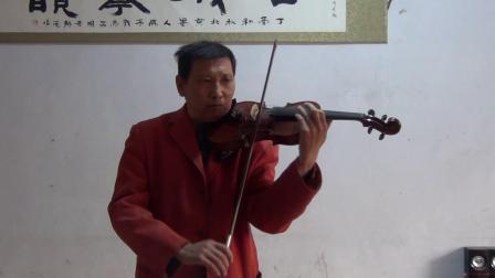 小提琴演奏世界名曲电影音乐之声插曲《雪绒花》