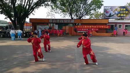 精要十八式-梅州市太极拳健身协会活动(绿叶队表演)