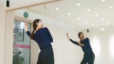 《琵琶行》舞蹈镜面教学分解