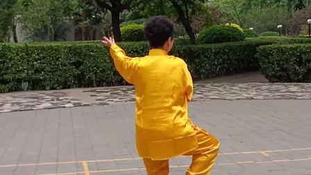 张金茹老师42式太极拳