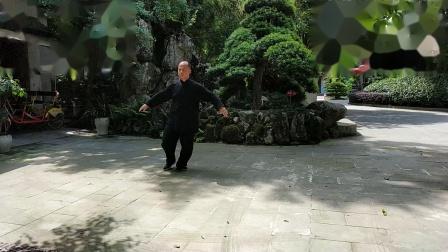 植根于传统杨式大架太极拳115式的亚林传统杨氏大架太极拳17式