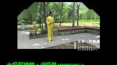 13中华传统武术意拳大成真经0014