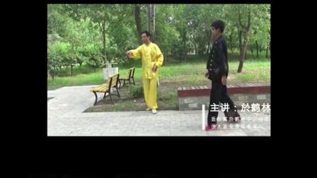 17中华传统武术意拳大成真经0002
