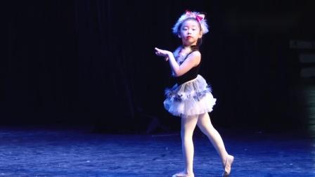 玛丽柏莎芭蕾学员演出《胡桃夹子》选段