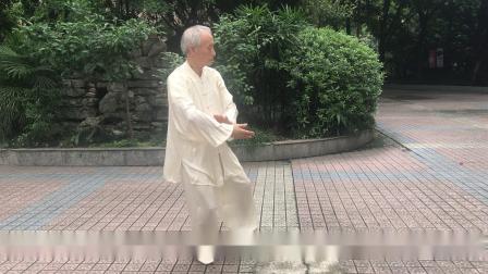 向先生操练杨式28式太极拳