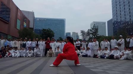 刘娇莲老师成都九方广场表演永年曲陌杨班侯太极拳。