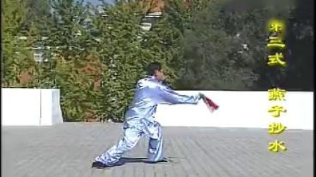 赵幼斌老师的太极剑
