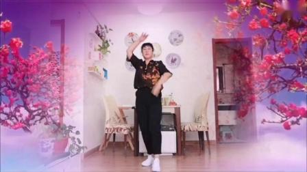 漂亮妈妈最新广场舞…红枣树