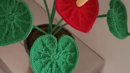 卜卜·编织 红掌盆栽