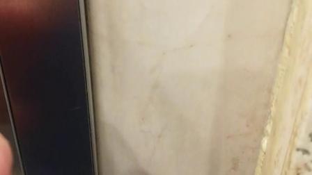 长白山大厦电梯间2