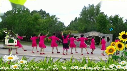 哈尔滨冰雪广场舞【在那桃花盛开的地方】 集体版