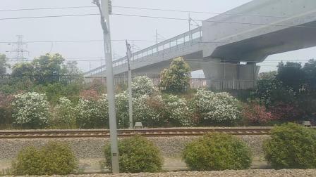 k34通过马群、紫金山东站、紫金山站。
