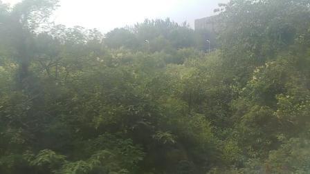 k34通过兴卫村段。