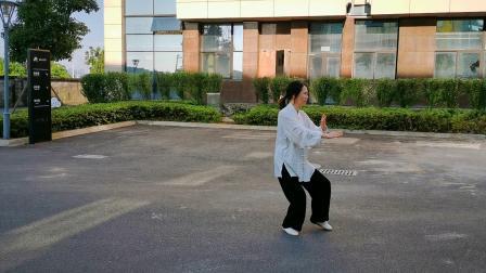 杨式28式太极拳 表演者:杨卫明