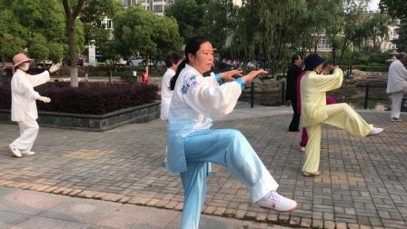 金湖拳缘28式太极拳