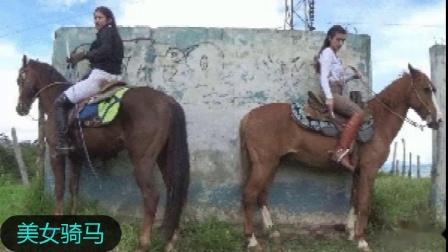 美女骑马5