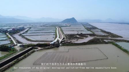 三门县大涛农业发展有限公司养殖地全貌
