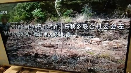 云南大理森林火灾通报