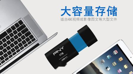 PNY ELITE-X 3.1 高速传输U盘-读取峰值200MB/s