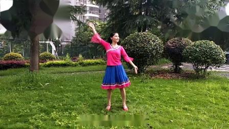 梅子广场舞《草原的夏天》