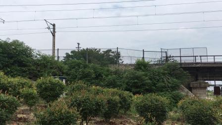 上局徐段df11牵引k348温州-沈阳北通过新汴河铁路桥