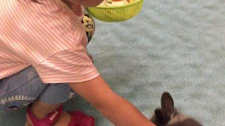 彭羽娍摸兔兔