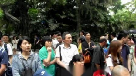 丑小鸭专辑:女声独唱  《宝贝》(印尼民歌)