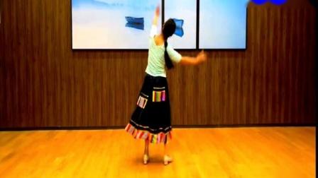 峡谷视频广场舞《洗衣歌》