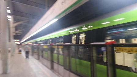 南京地铁三号线(039040)林场折返回来。