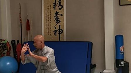陈式太极拳二十六式学习中